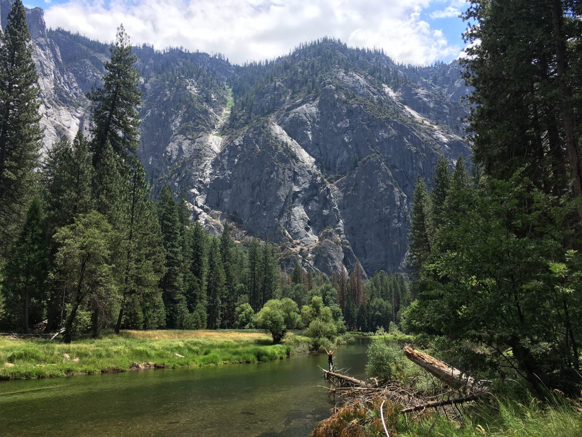 Päivä 238, Stanislaus National Forrest (Kalifornia)