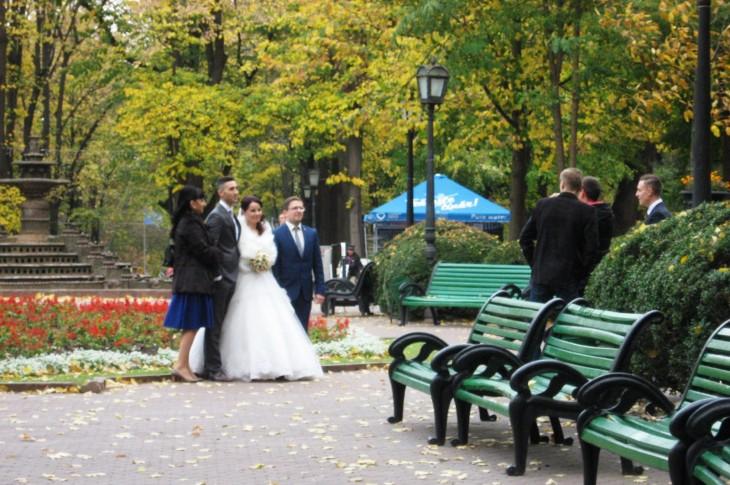 Hääpari puistossa kuvauksissa