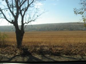 Moldovalaista maaseutua