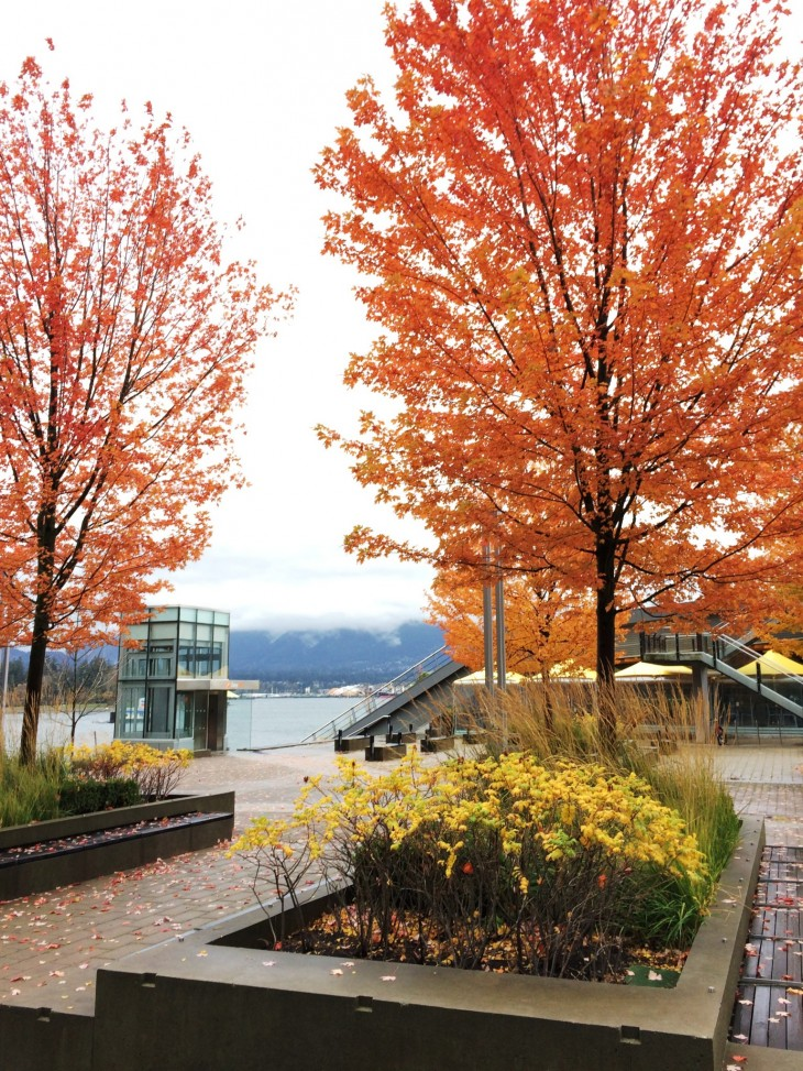 Syksyinen Vancouver