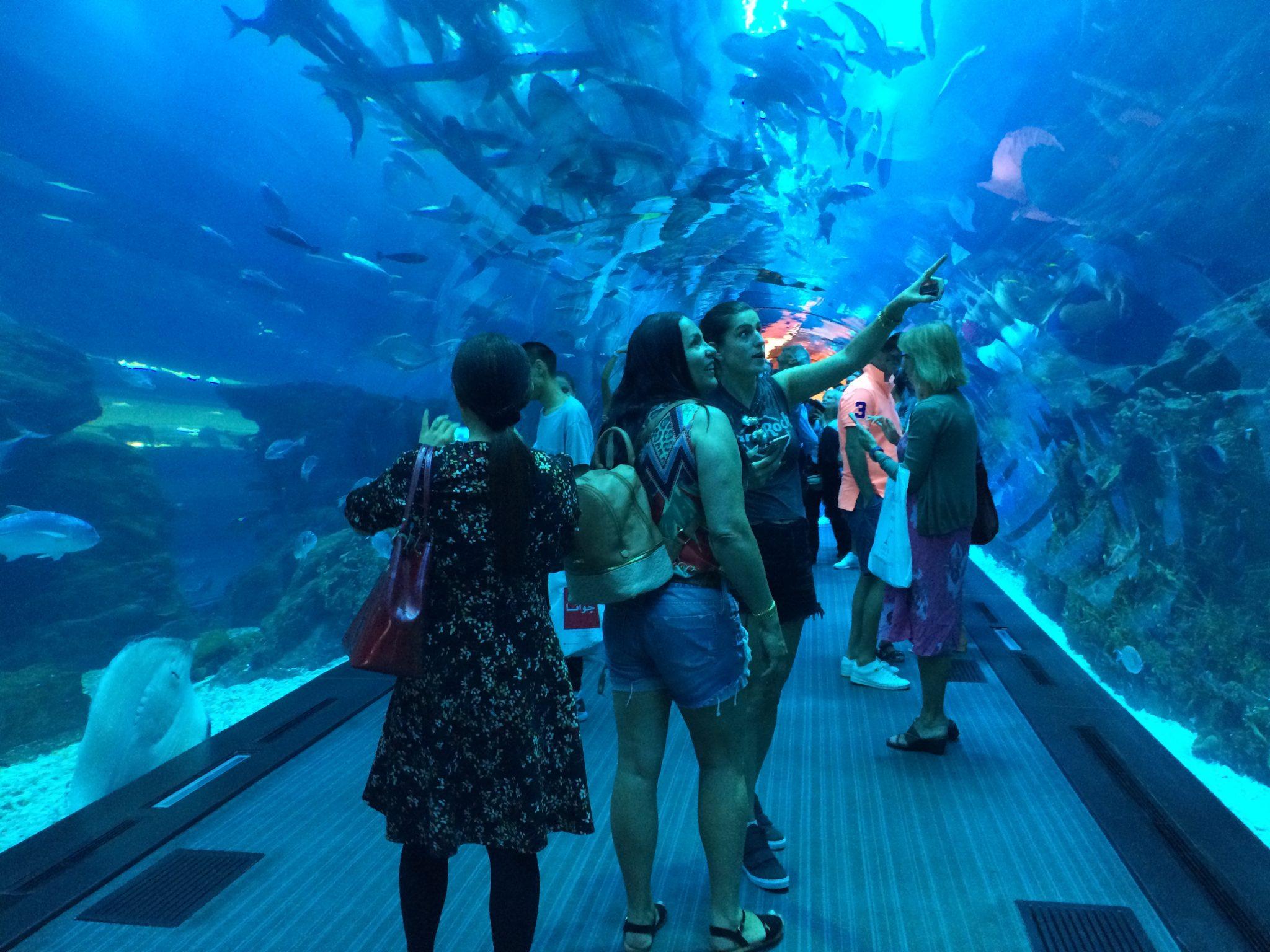 Akvaario Helsinki