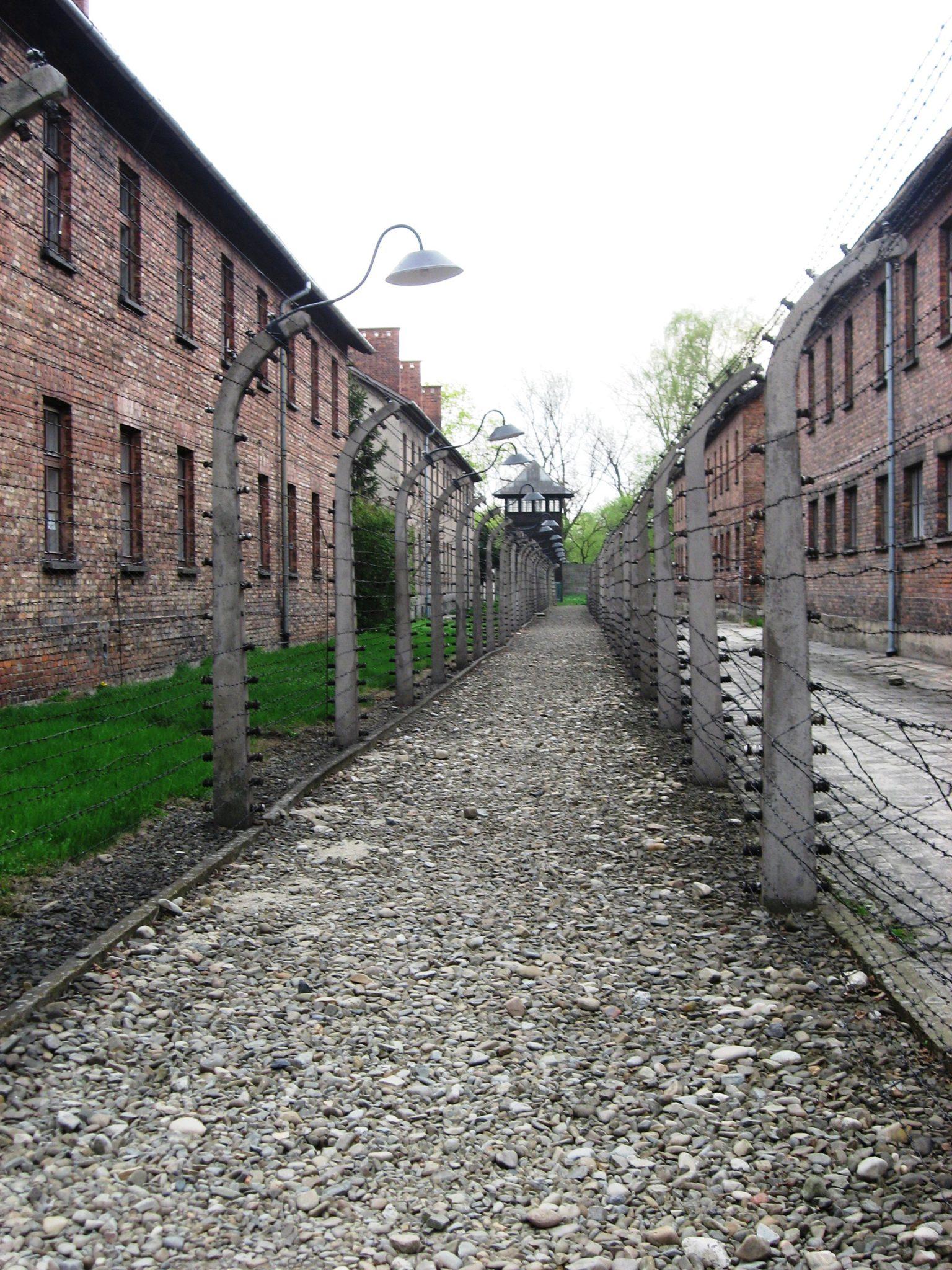 Natsien Keskitysleirit