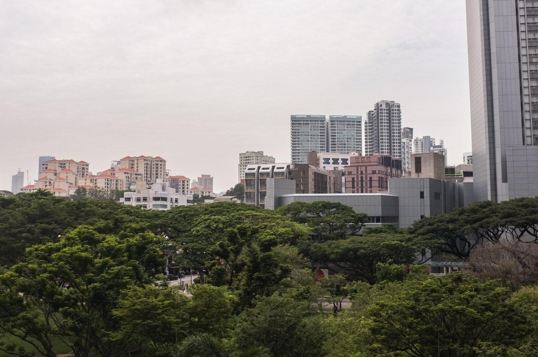 Puisto ja kaupunkia