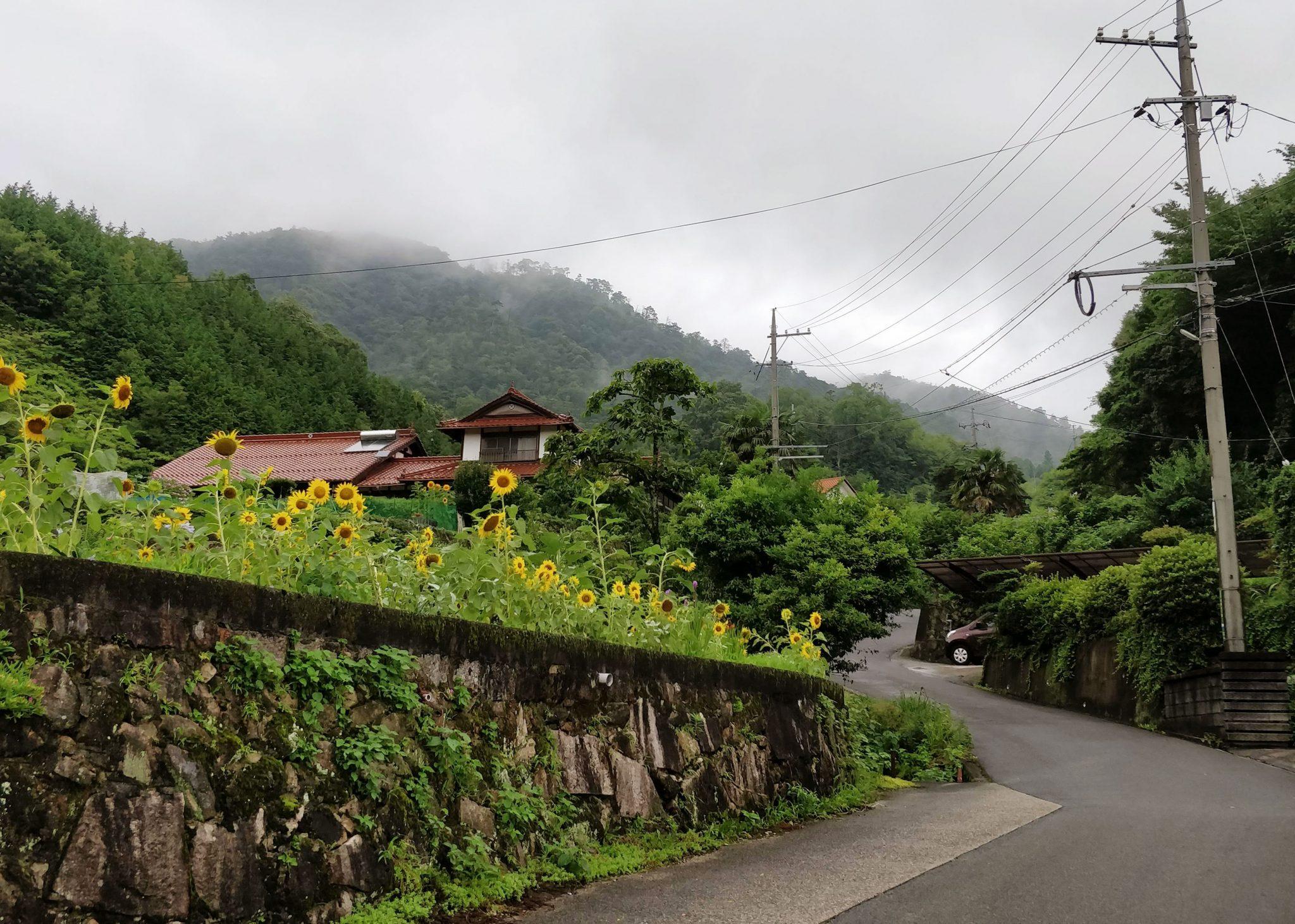 Katu Japanin maaseudulla