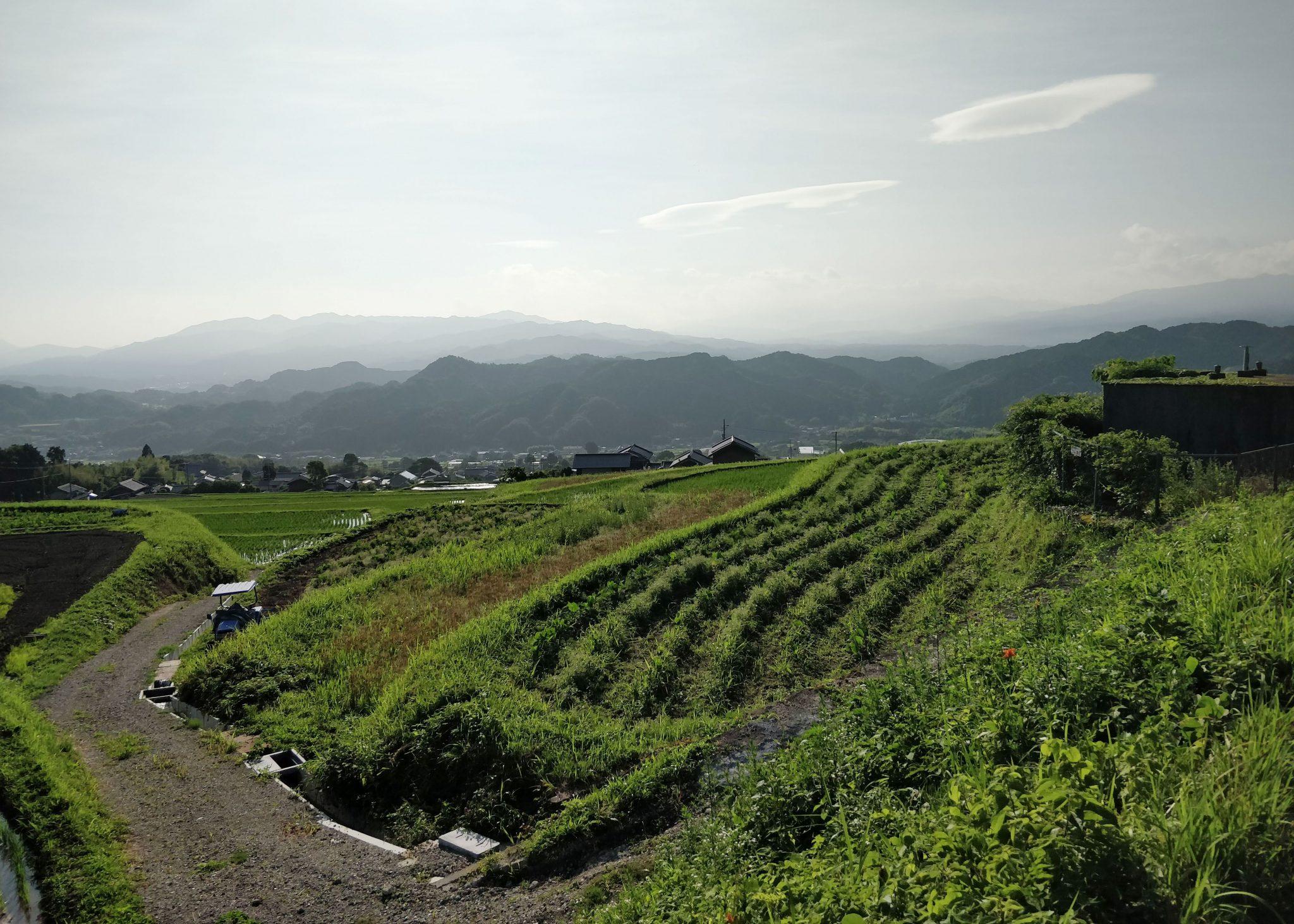 Maisema Japanin maaseudulla