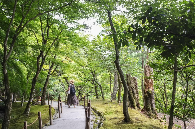 Kinkakuji-temppelin puutarha, puita ja polku ja kauempana kulkeva japanilainen nainen