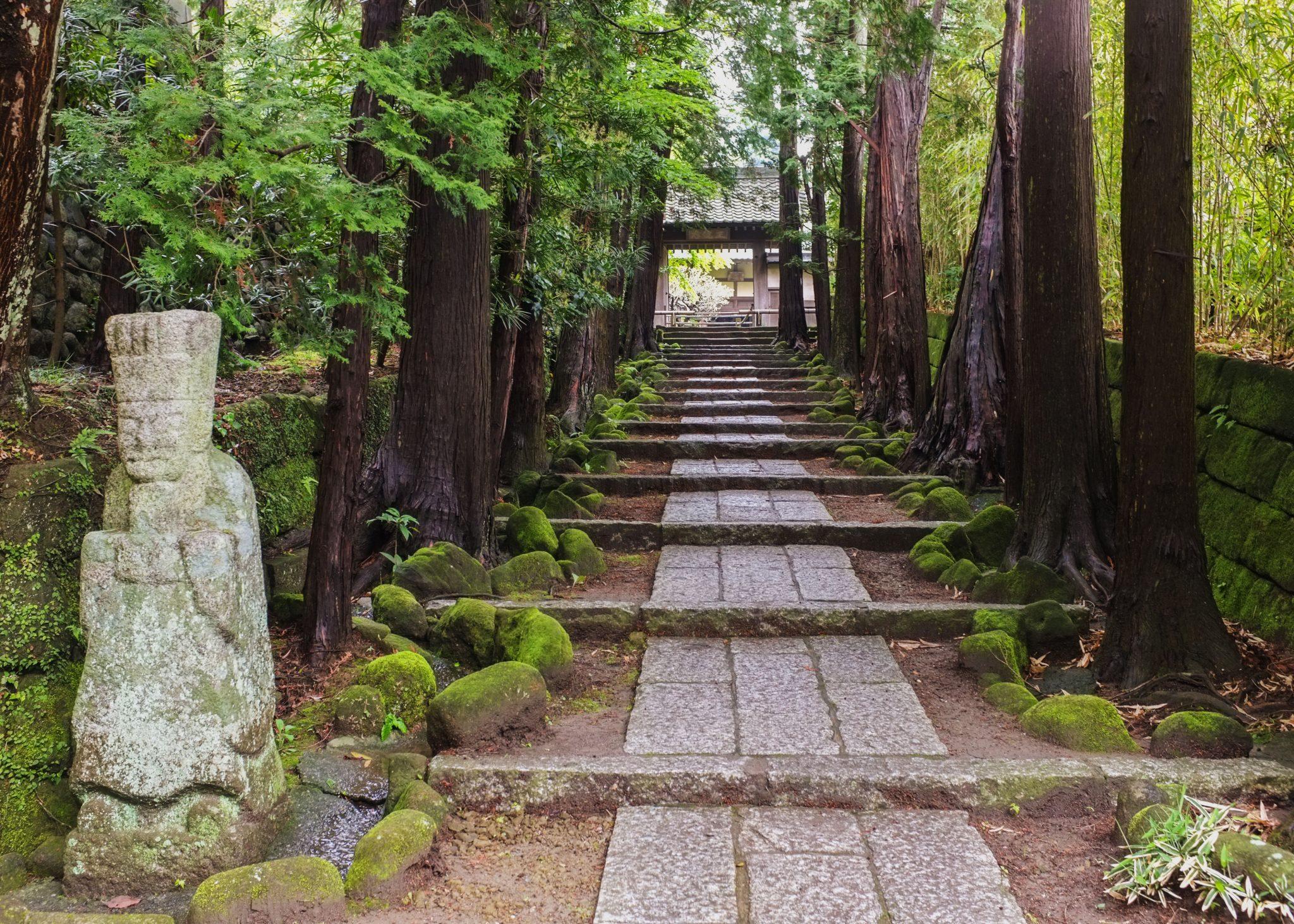 polku kamakurassa temppelissä ja patsas