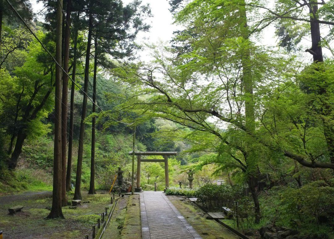 temppeli kamakurassa, torii-portti polun päässä ja luontoa