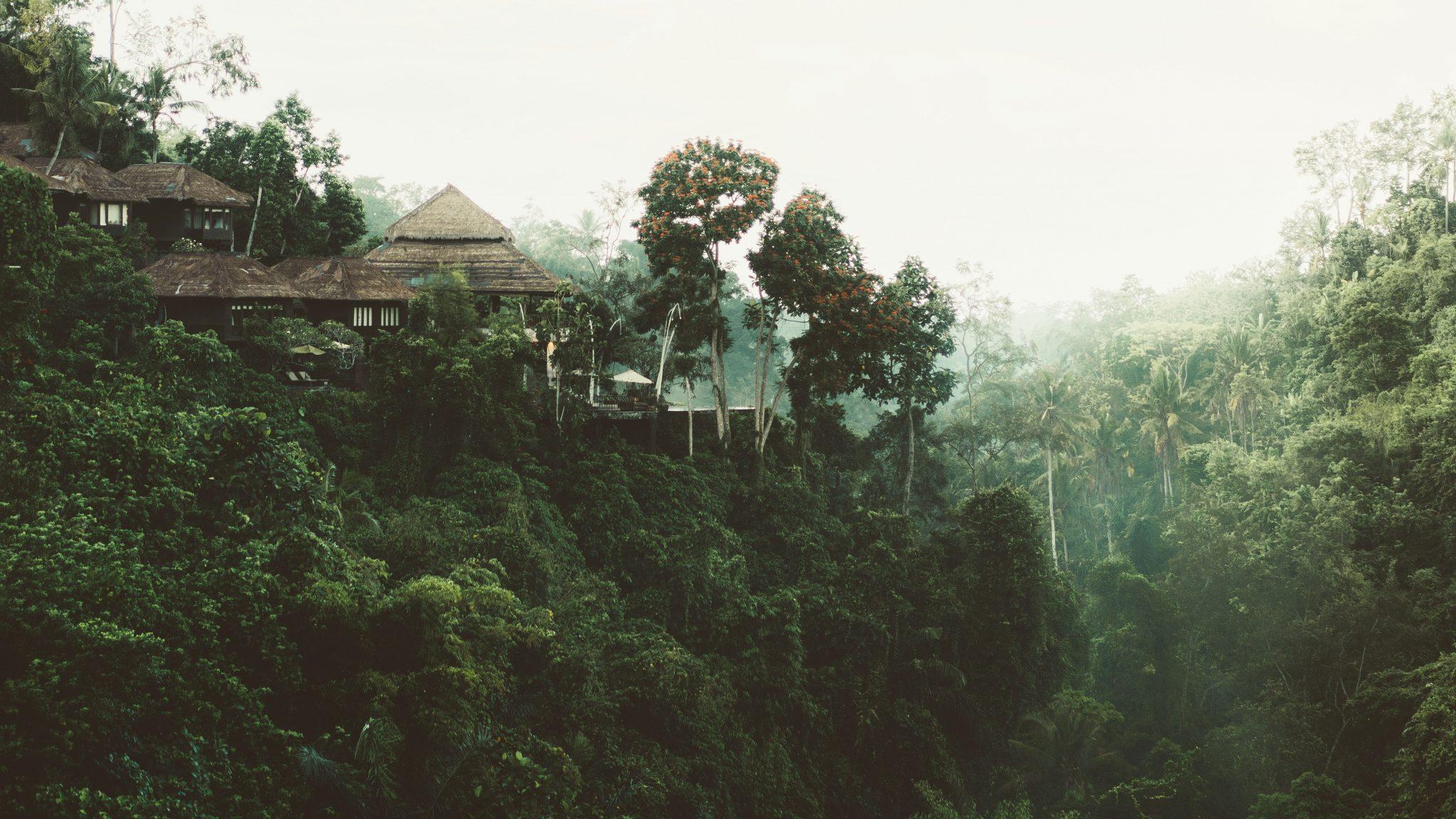 maisema sri lankassa ja talo metsän keskellä / kuva joshua newton