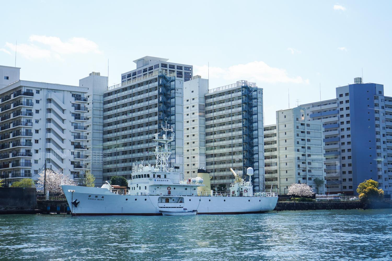 tokion taloja mereltä päin ja valkoinen laiva