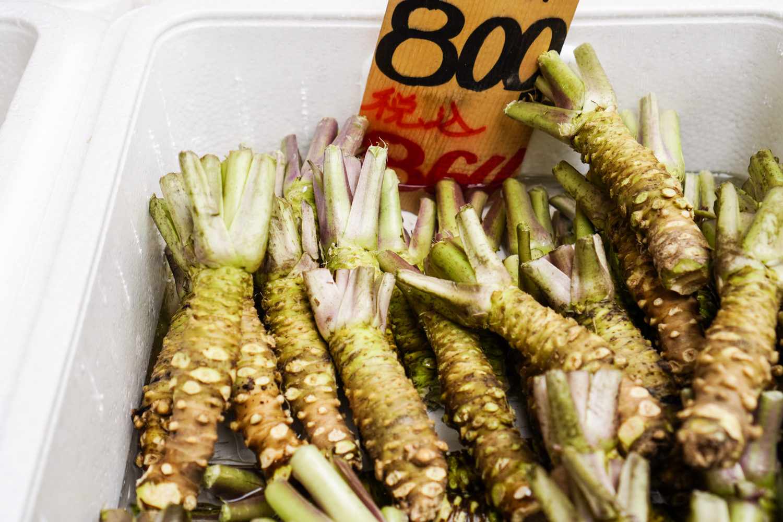 wasabi-kasveja