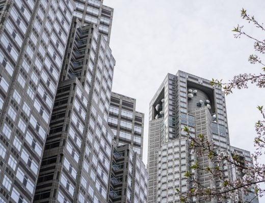 Tokyo Metropolitan Government Building ja kirsikankukkia