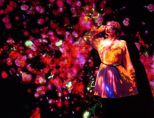 Iida TeamLab Borderless-museon kukkien kanssa