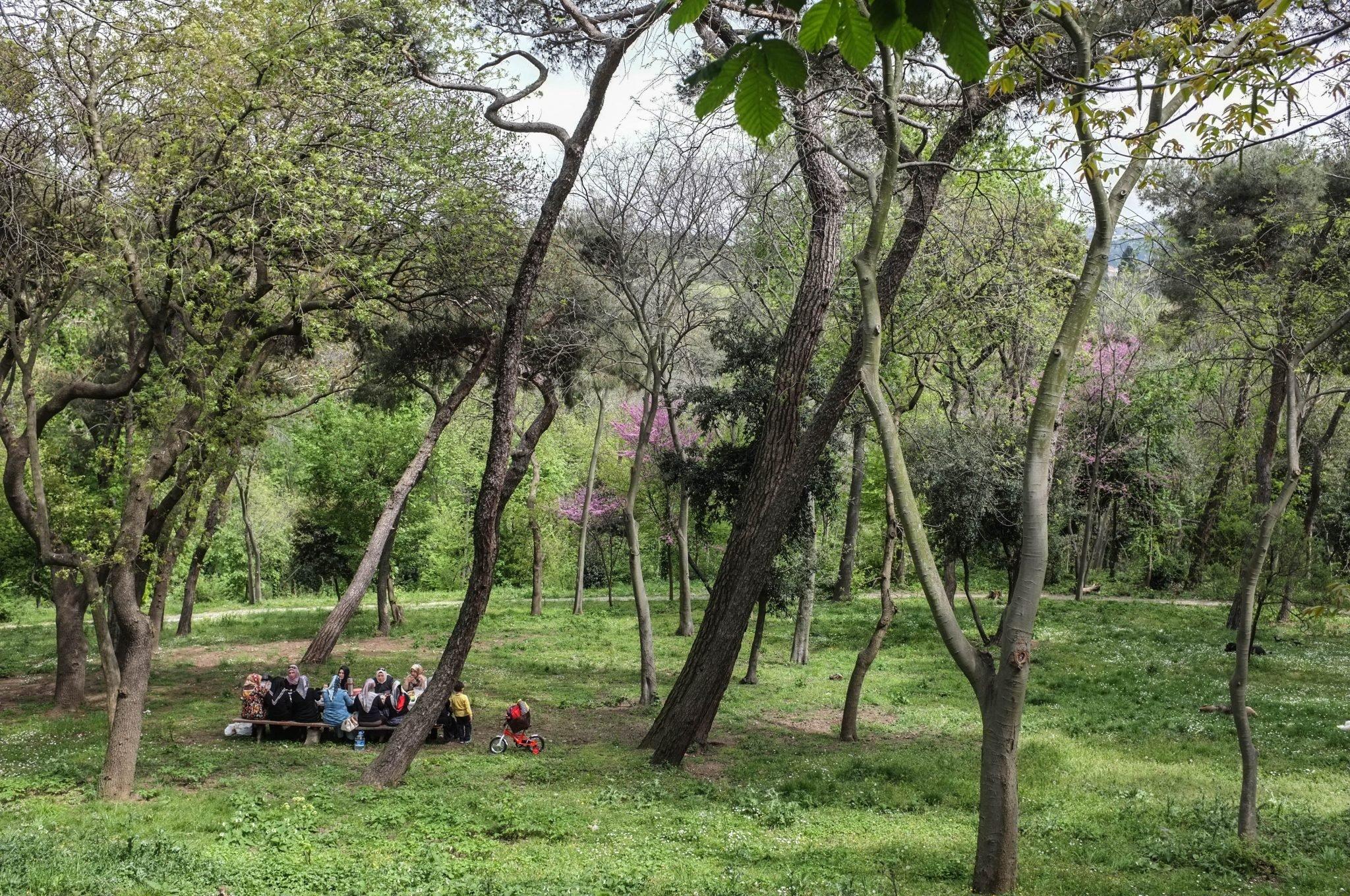 Istanbul puisto ja ihmisiä piknikillä
