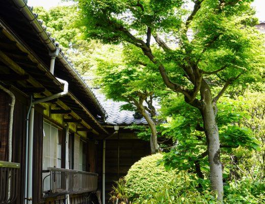temppeli Yanesenin alueella Tokiossa