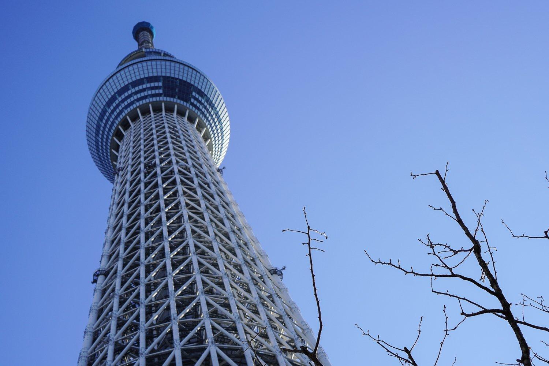 Maailman Korkein Torni
