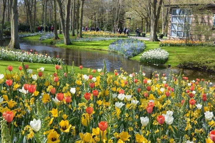 Keukenhof Hollanti tulppaanit Alankomaat