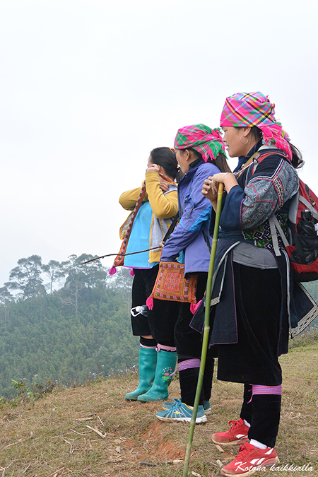 Sapa Vietnam vaellus hmong kansat