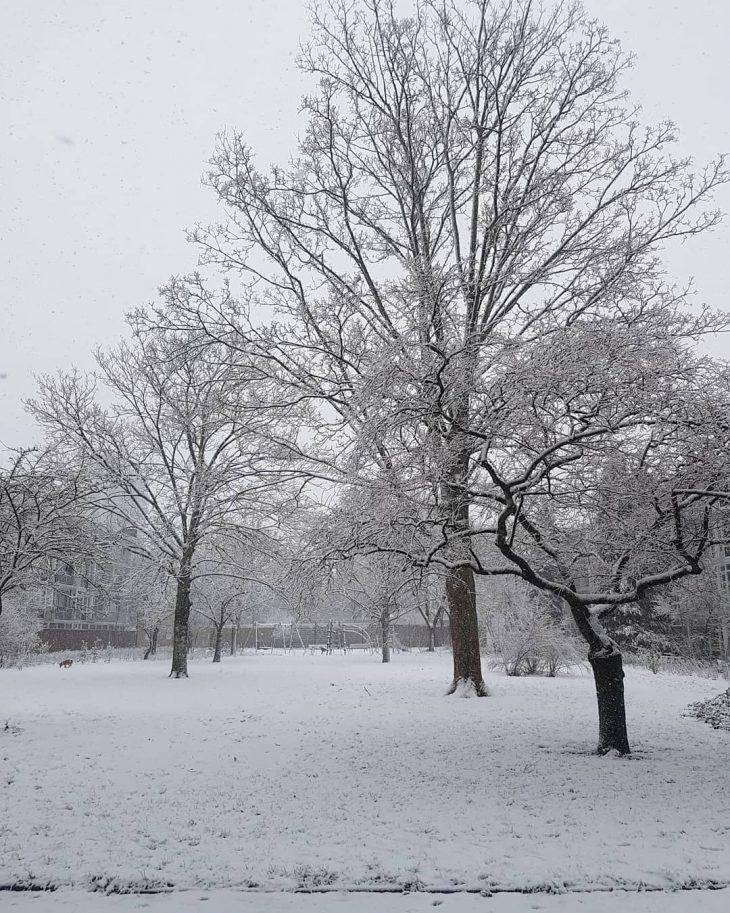 Snow time in the Netherlands  winter snow netherlands nederlandhellip