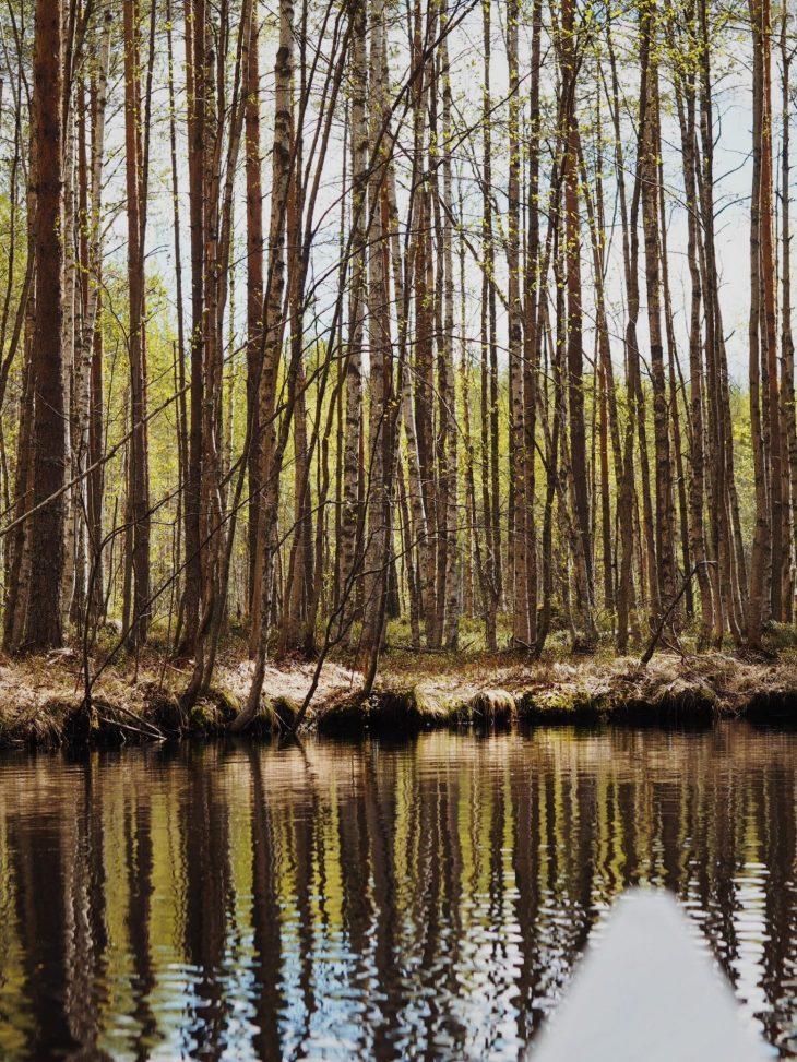 12 järven melontareitti, Outokumpu