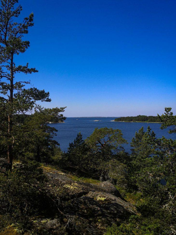 Nötön saari kesäkuussa