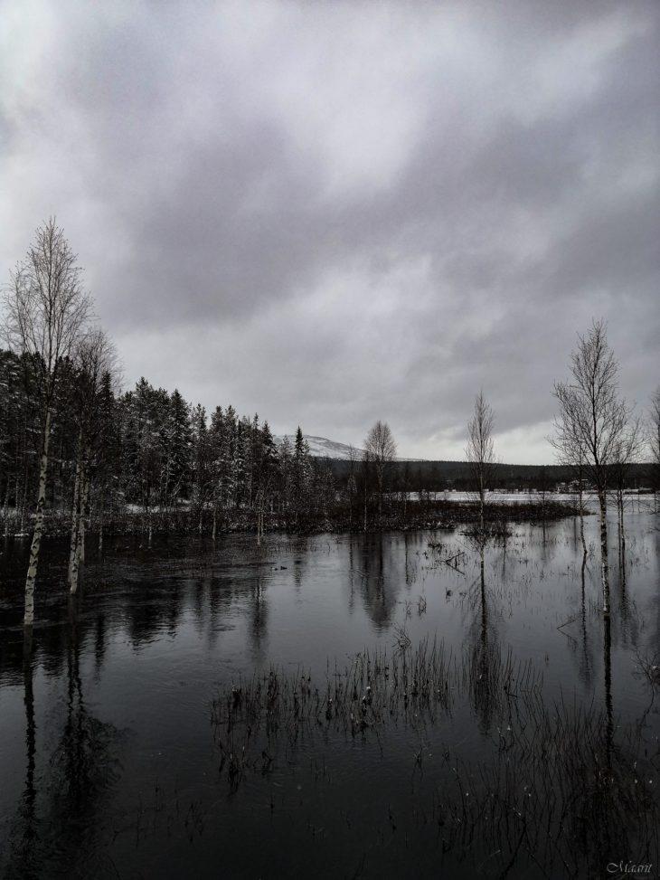 Kotiseudulla Pohjois-Kolarissa