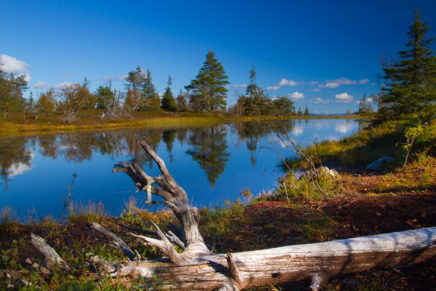 Riisitunturin peililampi, Suomen kuvatuin lampi