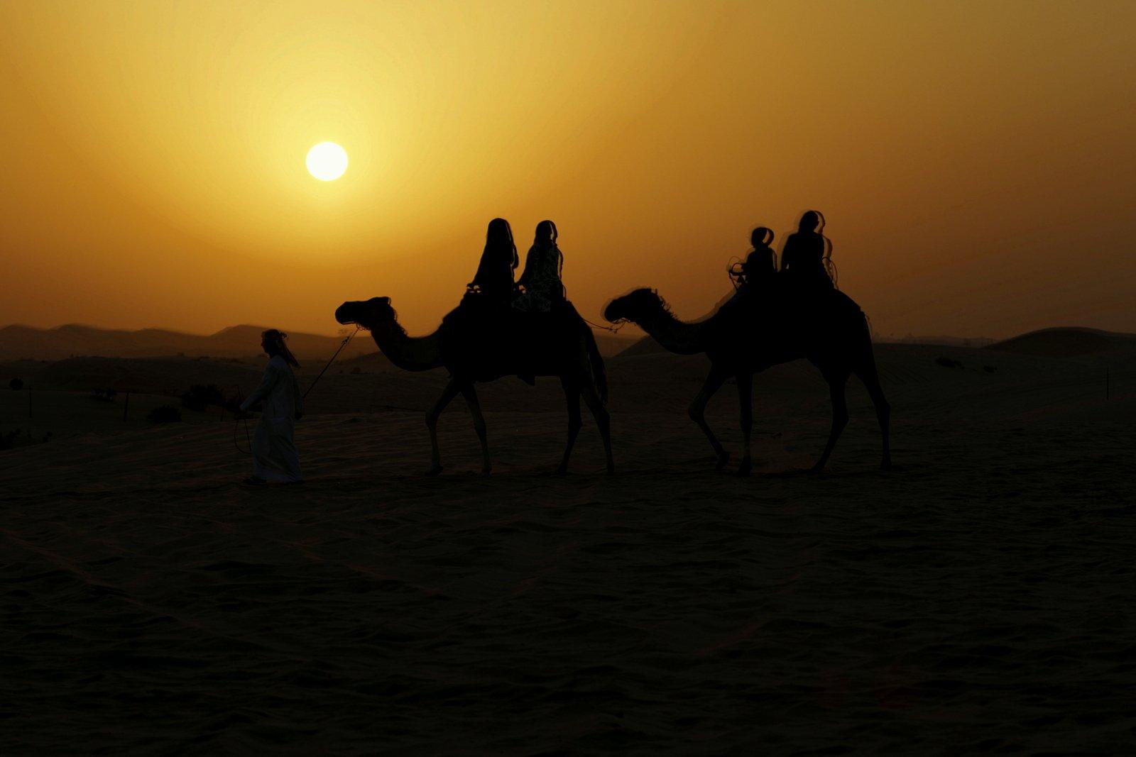 Kamelinratsastusta auringon laskiessa
