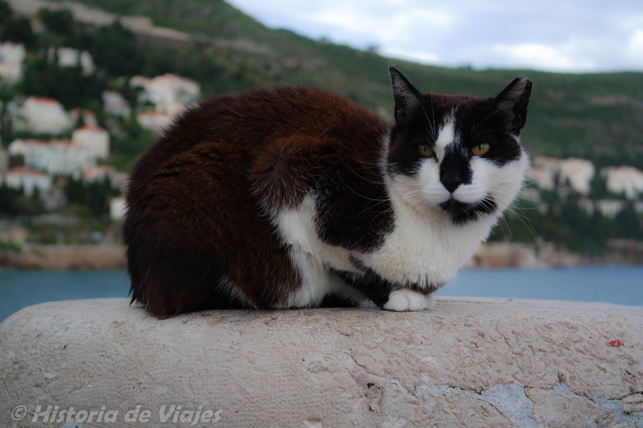Dubrovnik_vanhakaupunki10