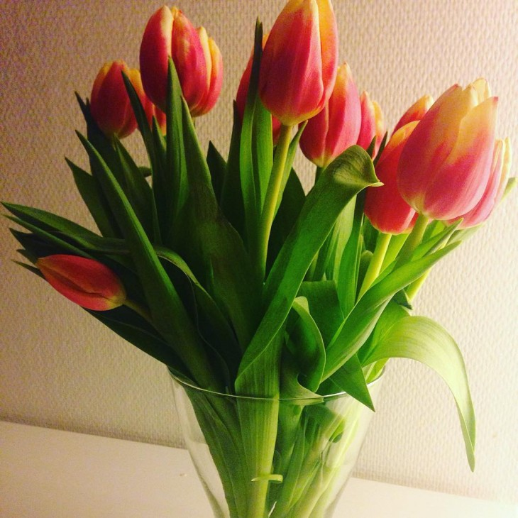 My favorites of the season tulips Lue loppuun rarr
