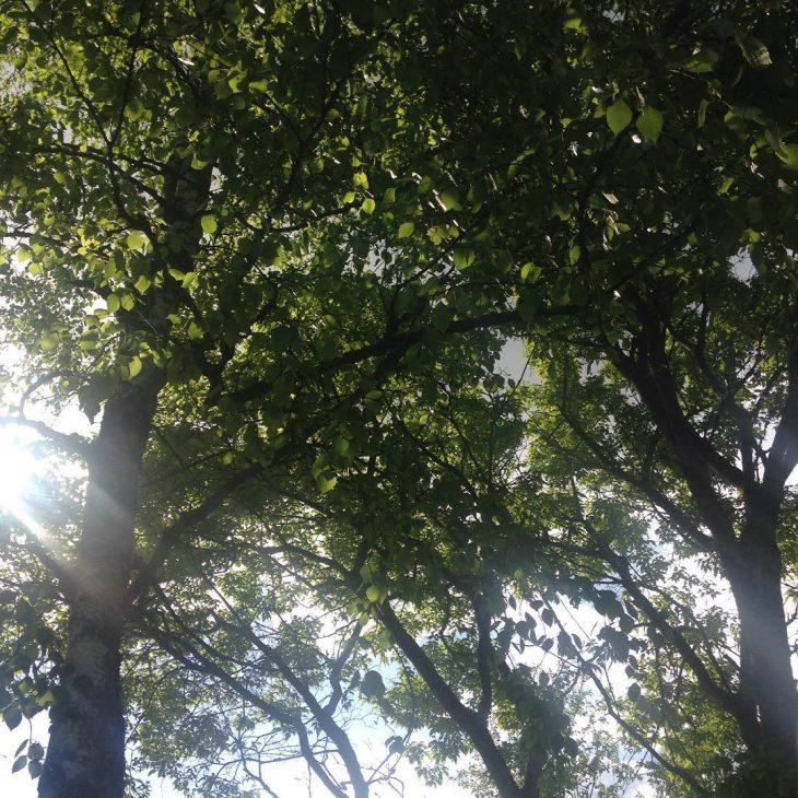 summer in Finland visitespoo katerinastravel Lue loppuun rarr