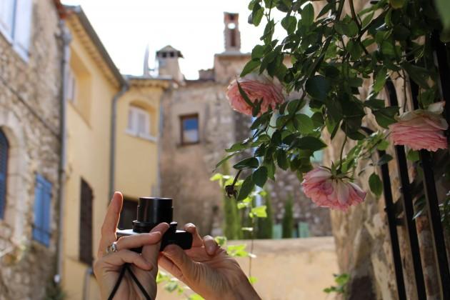 Kun kaksi maanikkoa kuvaa samaan aikaa ruusupuskaa, ei yllätä yhtään, että kuvaan työntyy yhtäkkiä toinen kamera.