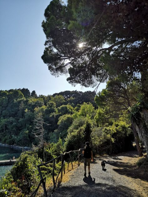 Korfu, Mon Repos puisto