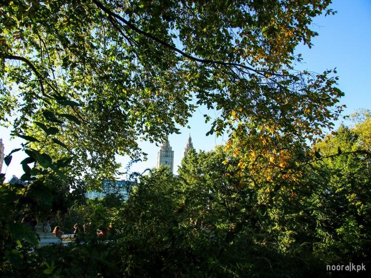 central_park_view1