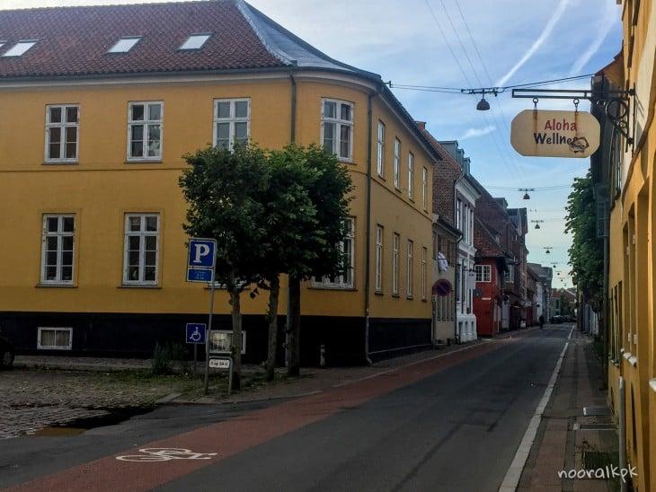 helsingor street view