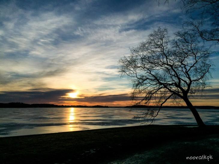 puu-auringonlasku