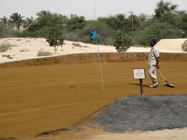 Awali Golf Club, Bahrain - browneilla lanamies siivosi jäljet...
