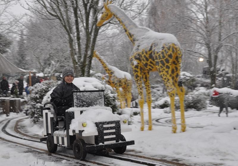 Talvinen tunnelma safarilla.
