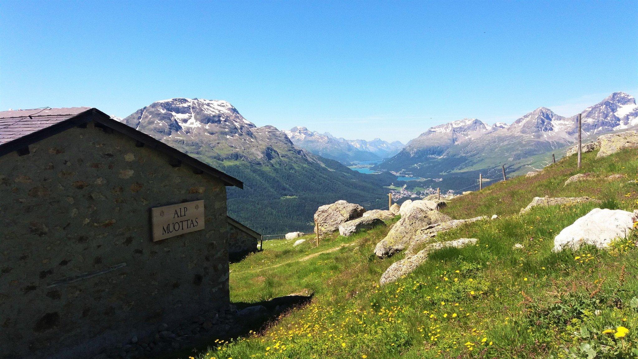 Alp Muottas