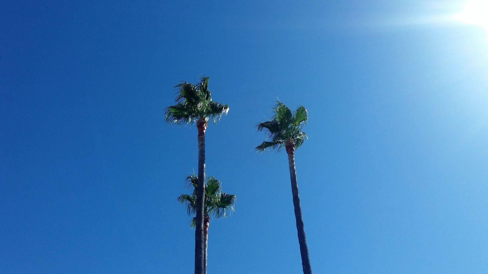 Costa Del Sol Espanja
