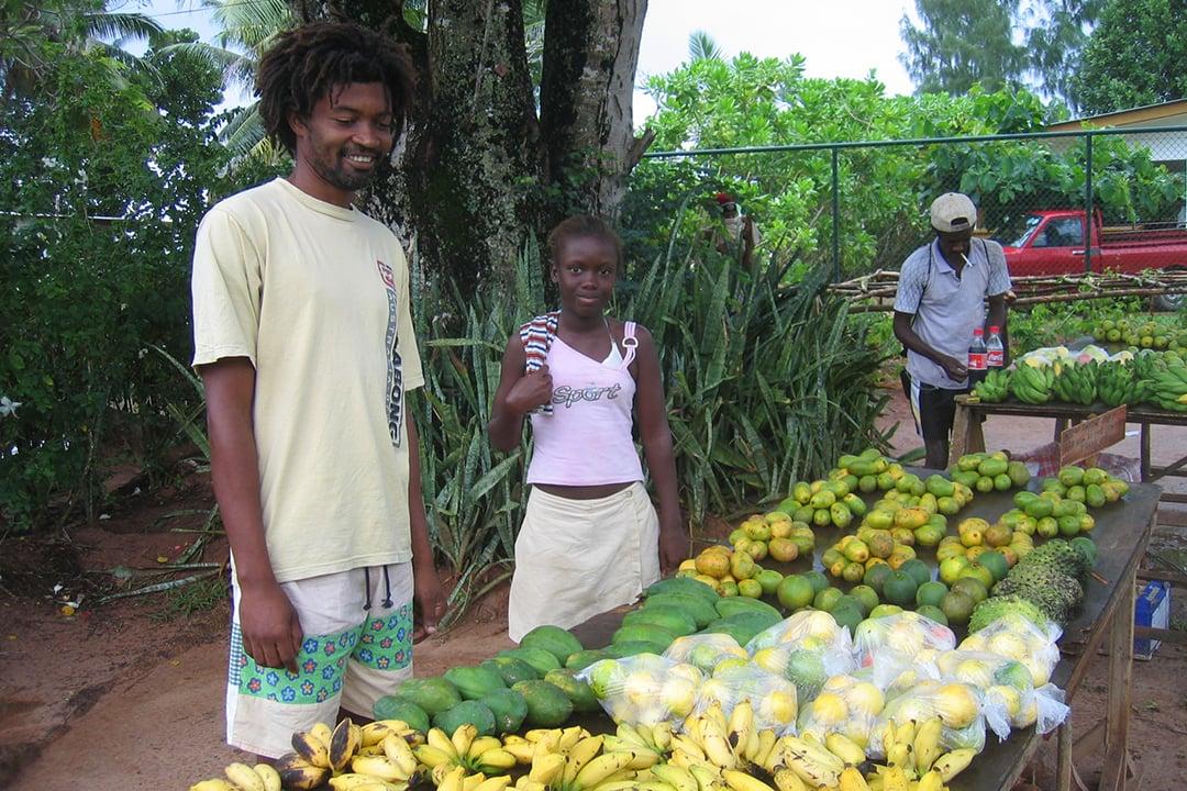 Praslin, Seychellit