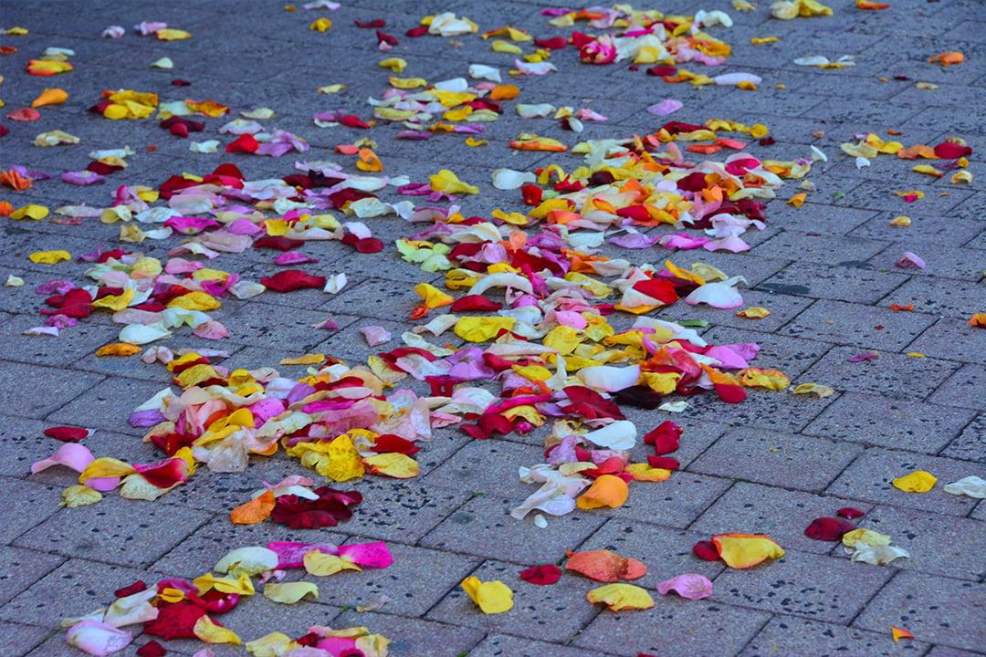 Kukkien terälehtiä Sainte Eugenien kirkon edustalla