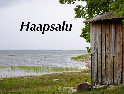 Omalla autolla Viroon - Lähtöselvitetty