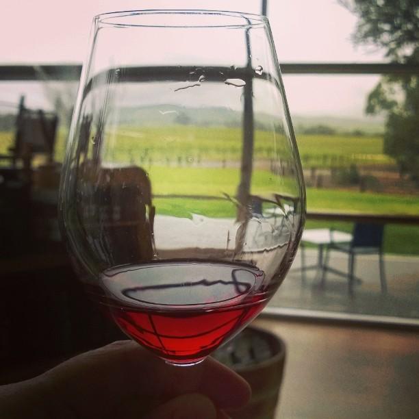 Wine tasting in Jacob's Creeks visitor centre, Barossa Valley, SA. Blogissa juttua viinitiloista Etelä-Australiassa. Linkki biossa. #jacobscreek #shiraz #winetasting #australianwines #southaustralia #barossavalley #vineyards #Australia #winetourism #viinimatkailu #matkablogi #lempipaikkojani #matkabloggaaja #uusipostaus #viinitila #viininmaistelu #syrah