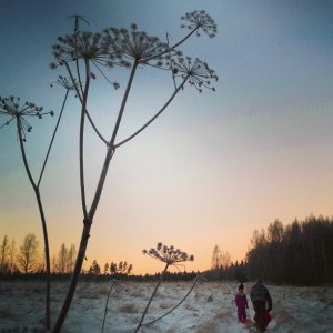 Winter afternoon in Finlands country side sunset afternoon thisisfinland kotimaassahellip