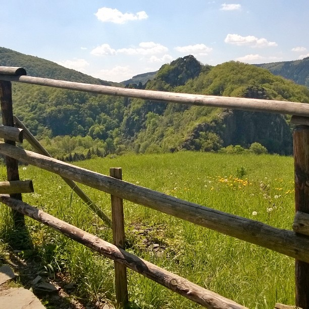 Lovely hot day exploring german nature. #visitgermany #ourgermany #altenahr #nature #wanderlust #ahr #burgare #wanderweg #rotweinwanderweg #ahrtal #lomallesaksaan