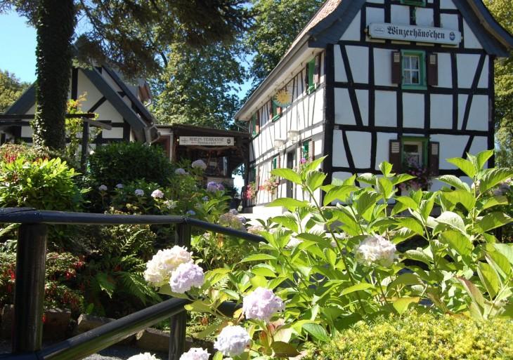 rhein_terrasse_drachenburg