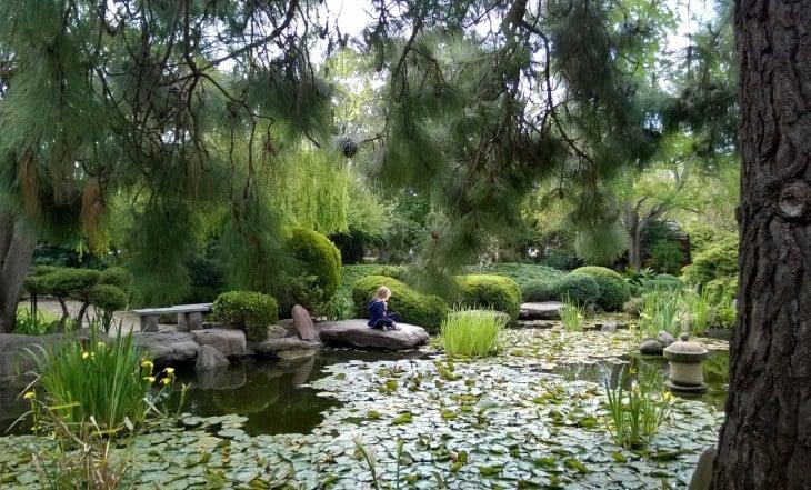 rauhallinen_hetki_puutarhassa_adelaidessa