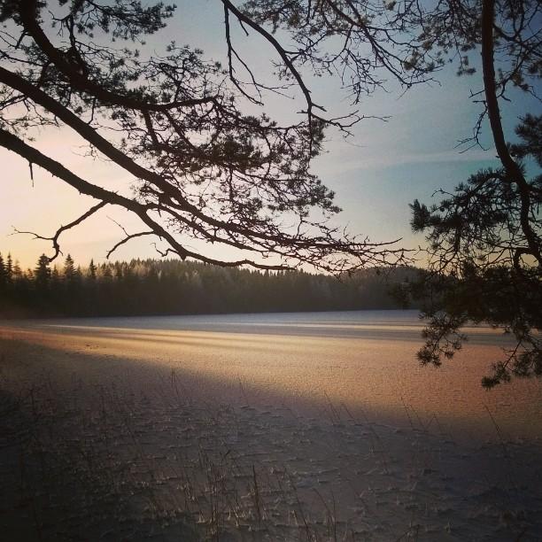 Happy Independence day Finland! Hyvää itsenäisyyspäivää Suomi! Kuva on vuoden takaa, mutta joululomalla pääsen taas noihin maisemiin. #suomi #Finland #suomiretki #kotimaassa #talvi #Winter #lake #ice #suomenluonto #luontokuva #finnishnature #naturephotos #matkablogi #lempipaikkojani #juupajoki #landscape #snow