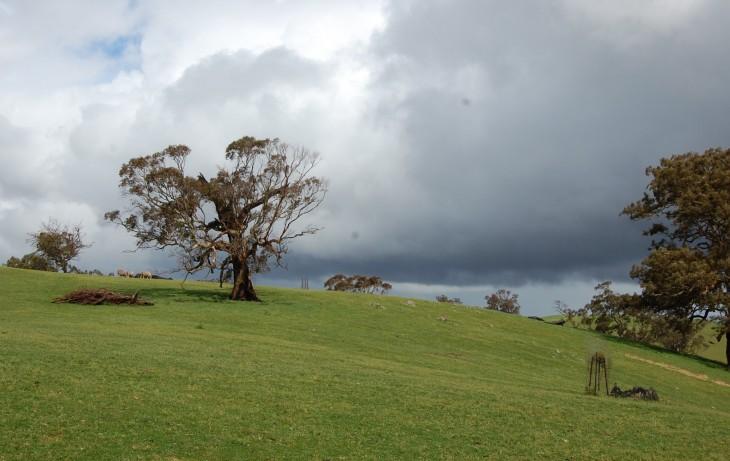 australian maaseutua